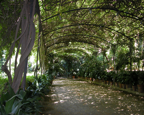 A warm walk in the gardens of Malaga